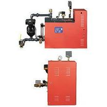 Steamist HC-30 Commercial Steam Generator System